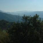 Passeggiata in collina